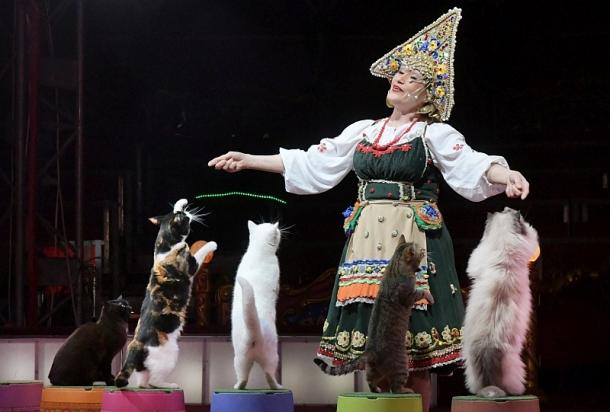 Цирк Балкански отново гостував Казанлък 28-ти юни до 02-ри юли 2017