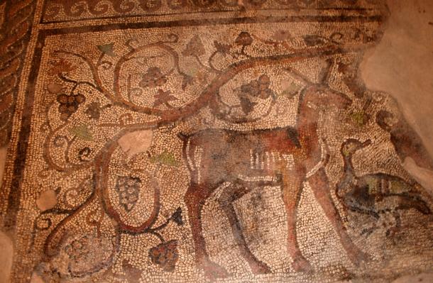 """Представят римското мозаично наследство на  Августа Траяна на """"Ваканция и Спа Експо"""" – 2018"""