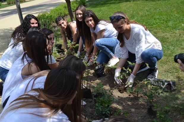 Кандидатките за Царица Роза 2018 засадиха рози