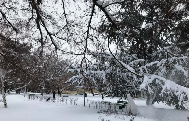 зима в Стара Загора