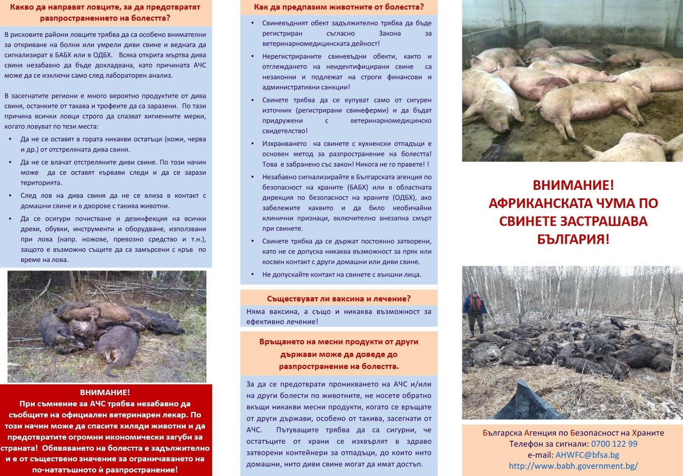 Земеделското министерство и Агенцията по безопасност на храните с разяснителна кампания за Африканската чума по свинете